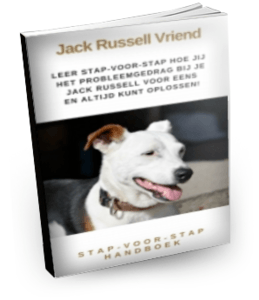 Baas-over-jack-russell