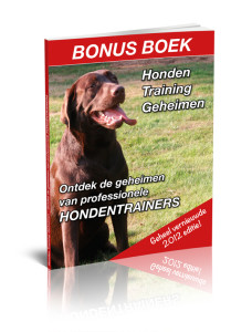 Honden-Training-Geheimen-228x300