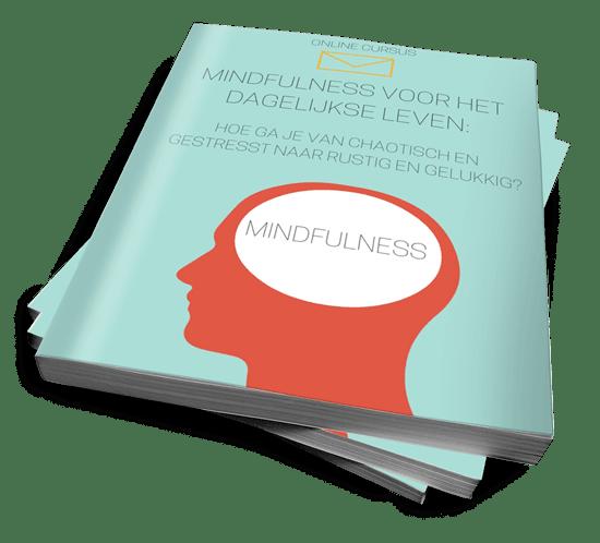 Mindfulness-voor-het-dagelijkse-leven