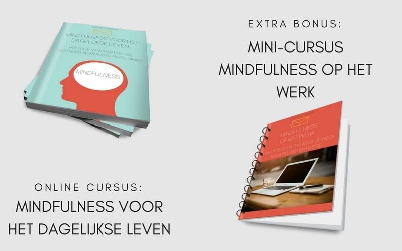Mindfulness_voor_het_dagelijkse_leven-bonussen