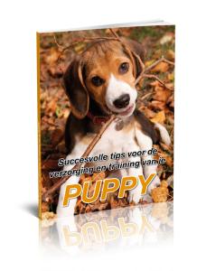 Succesvolle-tips-voor-de-verzorging-en-training-van-je-puppy-228x300