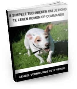 hond-komen-commando