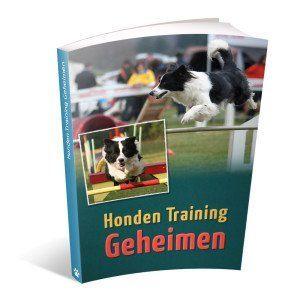 honden-training-geheimen
