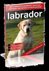 labrador-handboek