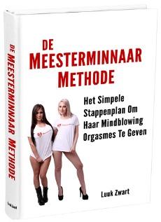 Meesterminnaar-Methode-Boek-voor-in-cursus (1)